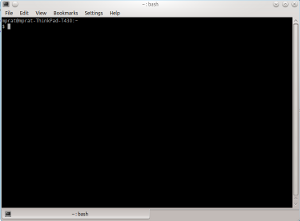 A screenshot of a Linux command-line terminal